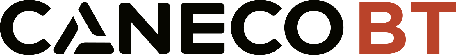 Logo Caneco BT